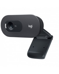 Webcam Logitech C505E 720p