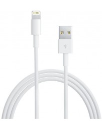 Apple Cable Lightning 1mt